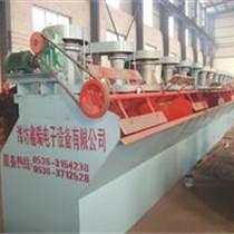 潍坊鑫瑞电子设备有限公司销售浮选机 破碎机