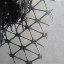 路面抗裂工程用鋼塑格柵