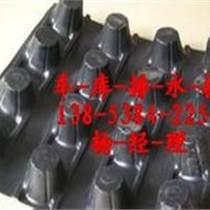 杭州地下室頂排水板=寧波屋頂隔