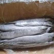 批发巴西进口带鱼