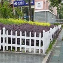 公園小路彩色塑鋼pvc草坪防護欄