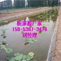 濮陽蓮藕池防滲膜水產養殖膜