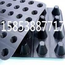 阳谷滤水板厂家价格