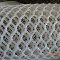 塑料平网  塑料防护网
