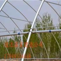 供應草莓種植塑料大棚建造