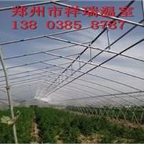 鋼管蔬菜溫室大棚造價鋼架大棚