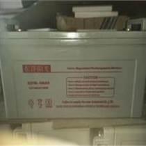 東洋蓄電池12v100Ah廠家直銷