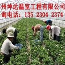 鄭州坤達最先進的溫室建造技術