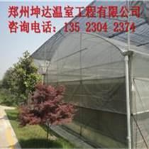 連棟溫室大棚蔬菜大棚建設成本
