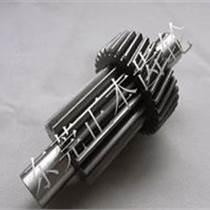 上海電錘齒輪 小模數齒輪