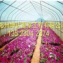 優質花卉大棚設計草莓大棚安裝