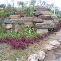 园林景观石 景观石批发 园林石