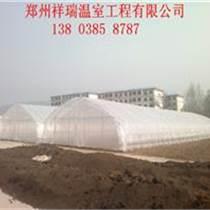 鄭州專業建設大棚拱棚建造團隊
