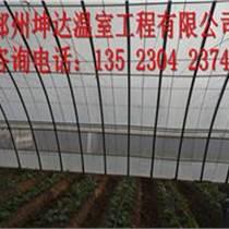 日光溫室建找鄭州坤達溫室銷售廠