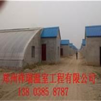 滄州建設種植蔬菜日光溫室建造