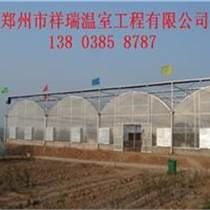 連棟溫室大棚,蔬菜大棚設計建造