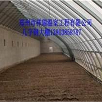 高級日光溫室建造祥瑞品牌溫室