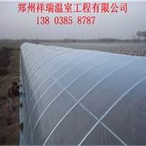 祥瑞農業技術塑料大棚建造推廣