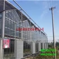 文洛型玻璃溫室 育苗溫室