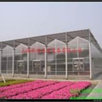 阳光板温室安徽温室大棚销售