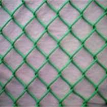 供西宁金属丝网和青海护栏网种类