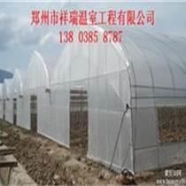 林州市建造種植蔬菜連棟拱棚造價