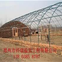 拱棚建造報價養殖大棚建造標準