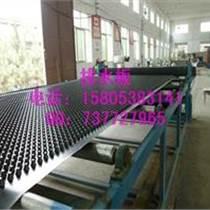 高密度排水板/聚乙烯排水板供應