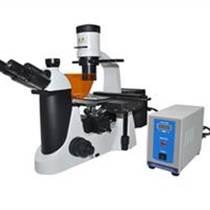 倒置熒光顯微鏡 MF50