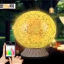 麦极客LED智能灯