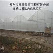 溫室大棚建設連棟溫室建造技術