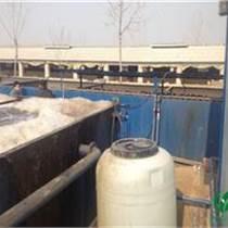 養殖污水處理一體化設備廠家報價