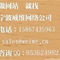 宁波网络营销公司