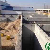 廠家直銷乳制品工業廢水處理設備