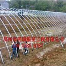 土坑棚建造成本日光溫室建造價格