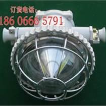 DGS20/127L(A)照明燈/LED巷道燈