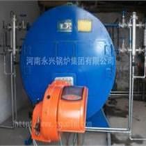 食品机械用0.5吨燃气蒸汽锅炉