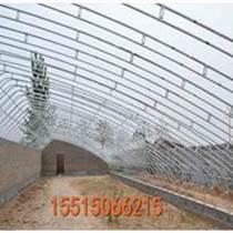 大跨度日光溫室大棚建設騰達溫室