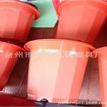 高腰花盆模具價格 臺州黃巖專業花盆模具制造
