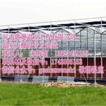 青岛各种温室大棚销售价格