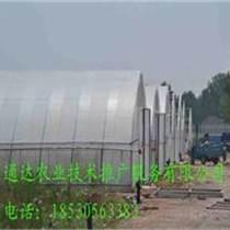 蔬菜養殖大棚建造基地