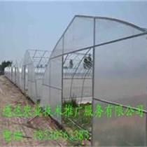 怎樣建造拱棚 通達溫室建造