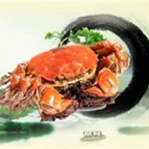 現在大閘蟹多少錢一斤