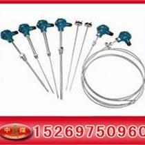 铠装热电偶 热电阻  测温电阻