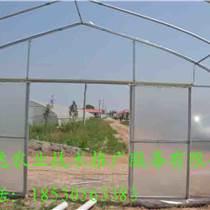 怎么建造一畝蔬菜種植大棚