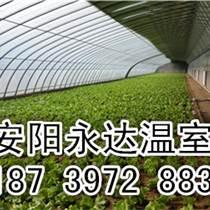 永達建造草莓溫室大棚專業技術