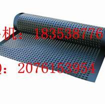排水板¥合肥屋頂綠化濾水板