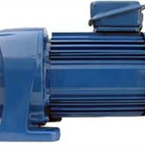 諾廣現貨GW、GF28-0.4KW-100齒輪馬達