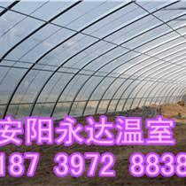 河南郑州温室大棚骨架建造材料