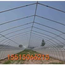 單棟鋼管大棚建造專業建造隊伍安陽騰達溫室
